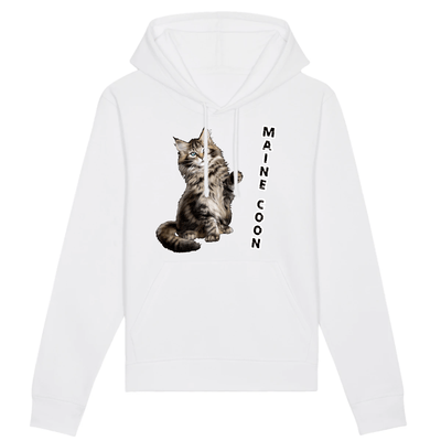 sweat chat maine coon