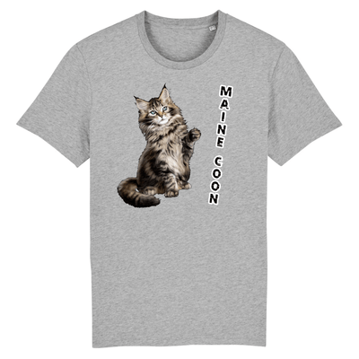 tee-shirt chat maine coon couleur gris