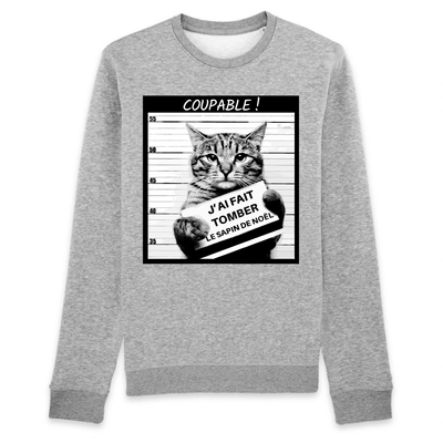 pull humour chat couleur gris