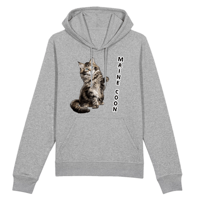 sweat chat maine coon couleur gris