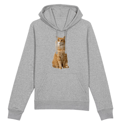 sweat chat roux couleur gris