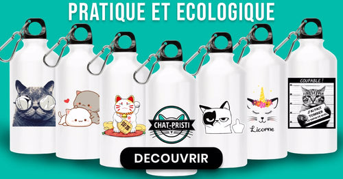 gourde chat collection