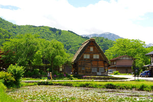 Shirakawa-go Travel Guide 2019-2020 – Access, Things To Do, And Food