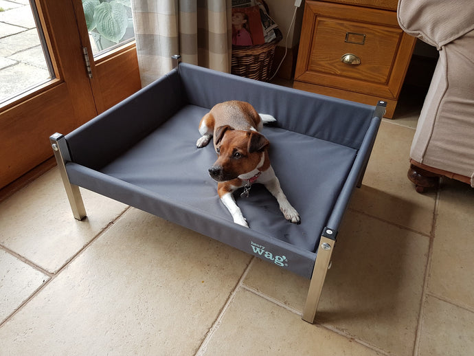 Replacement Elevated Dog Bed Cover