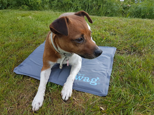 Henry Wag Cooling Mats for pets