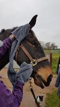 Load image into Gallery viewer, Henry Wag Equine Microfibre Glove Towel