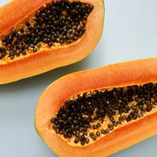 3 lb Textured Papaya Panacea Chia