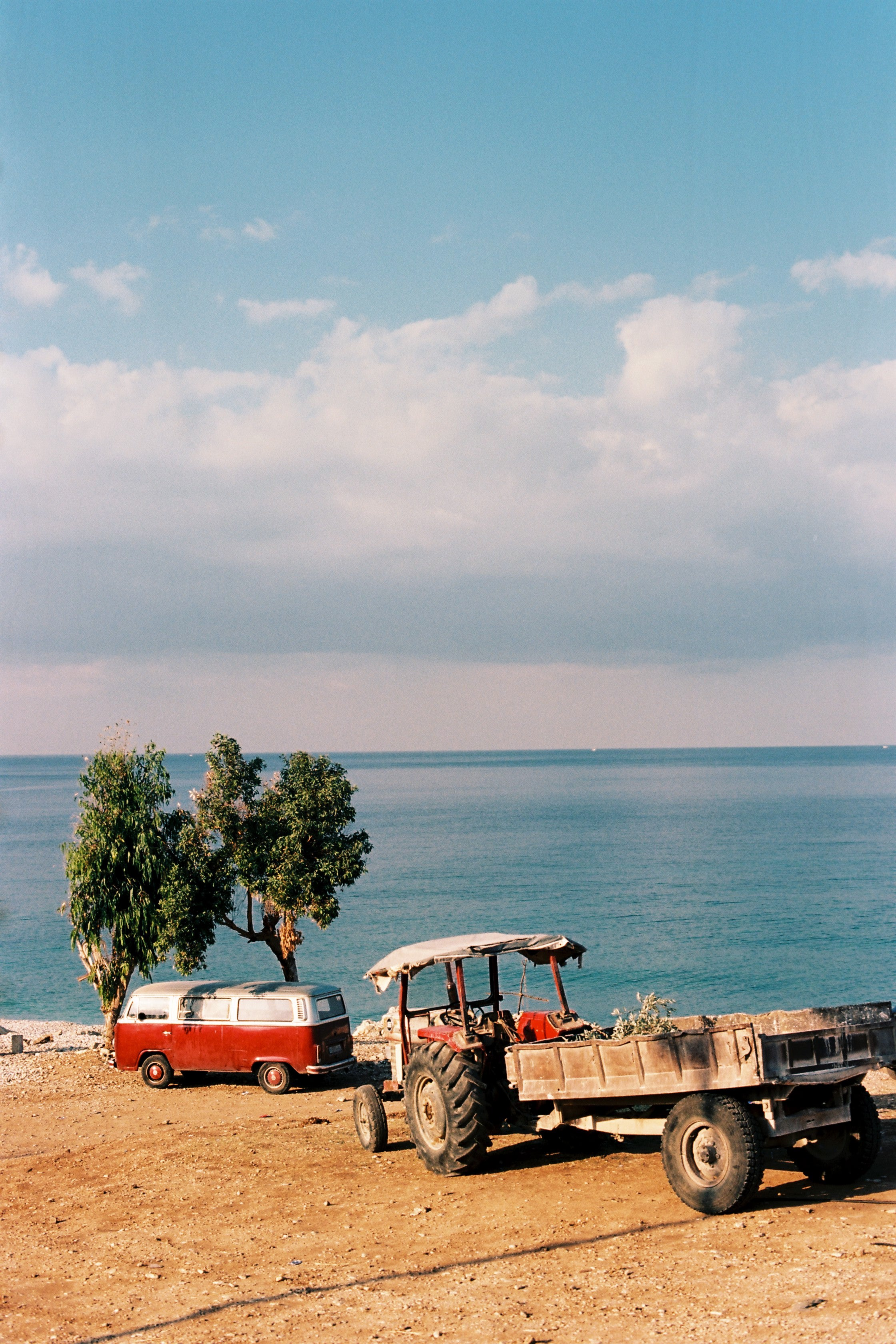 """Two Trees By The Sea"" photograph by Clara Abi Nader"
