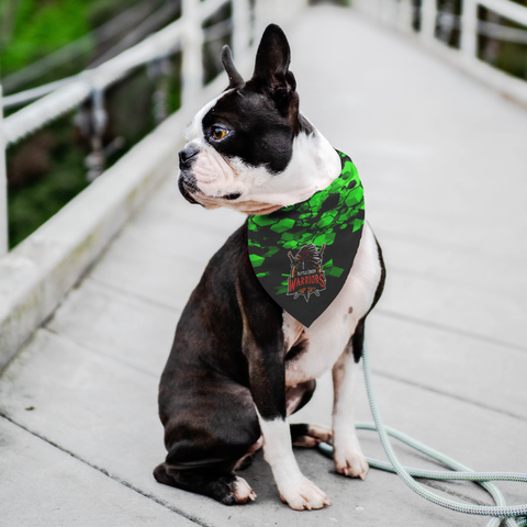 Pet Bandana, Battle Creek Warriors