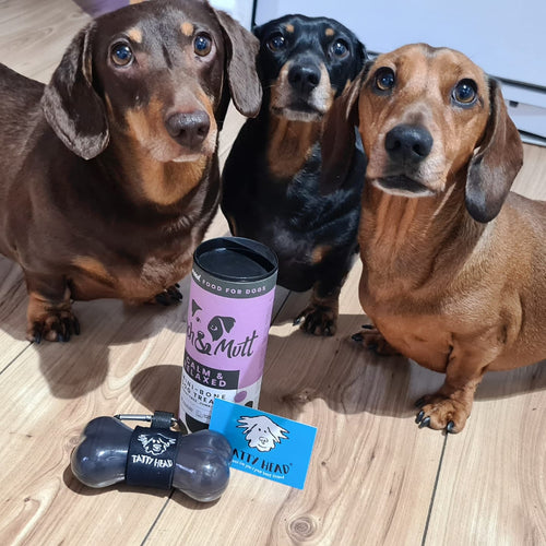 Sausage dogs with a grey tatty head dog treat dispenser and pooch & mutt calm and relaxed grain free dog biscuits