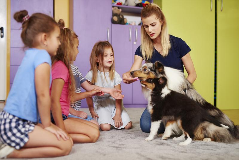 The Best Dog Breeds if You Have Young Children at Home