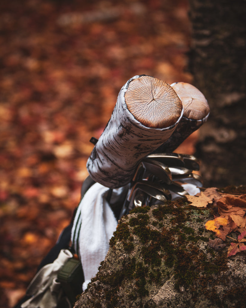 close up view of the birch tree golf headcovers laying on a rock in the woods