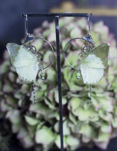 "Boucles d'oreille ""Imago"" - Green Charaxes"