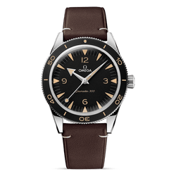 Omega Watch Co‑Axial Master Chronometer 41 mm 234.32.41.21.01.001