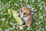 Beco Plush Toy - Aretha the Alligator - Beco Pets