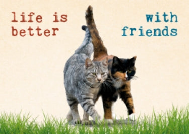 Wenskaart Life is better with friends – Zintenz Organic Cards