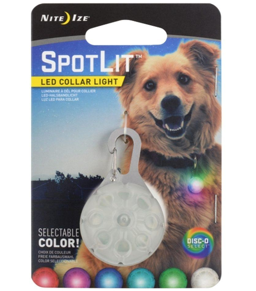 SpotLit™ LED Disc-O Collar Light