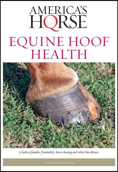 EQUINE HOOF HEALTH e-book-Horse Palace-Horse Palace-update alt-text with template horse-education-supplements-training-riding-ebook-horse-dvd-guide-to-success-horseman-western-cowboy-cowgirl-stories-horse-safe-health-of-horse-breeding-horse-exercice-unicorn-stories-