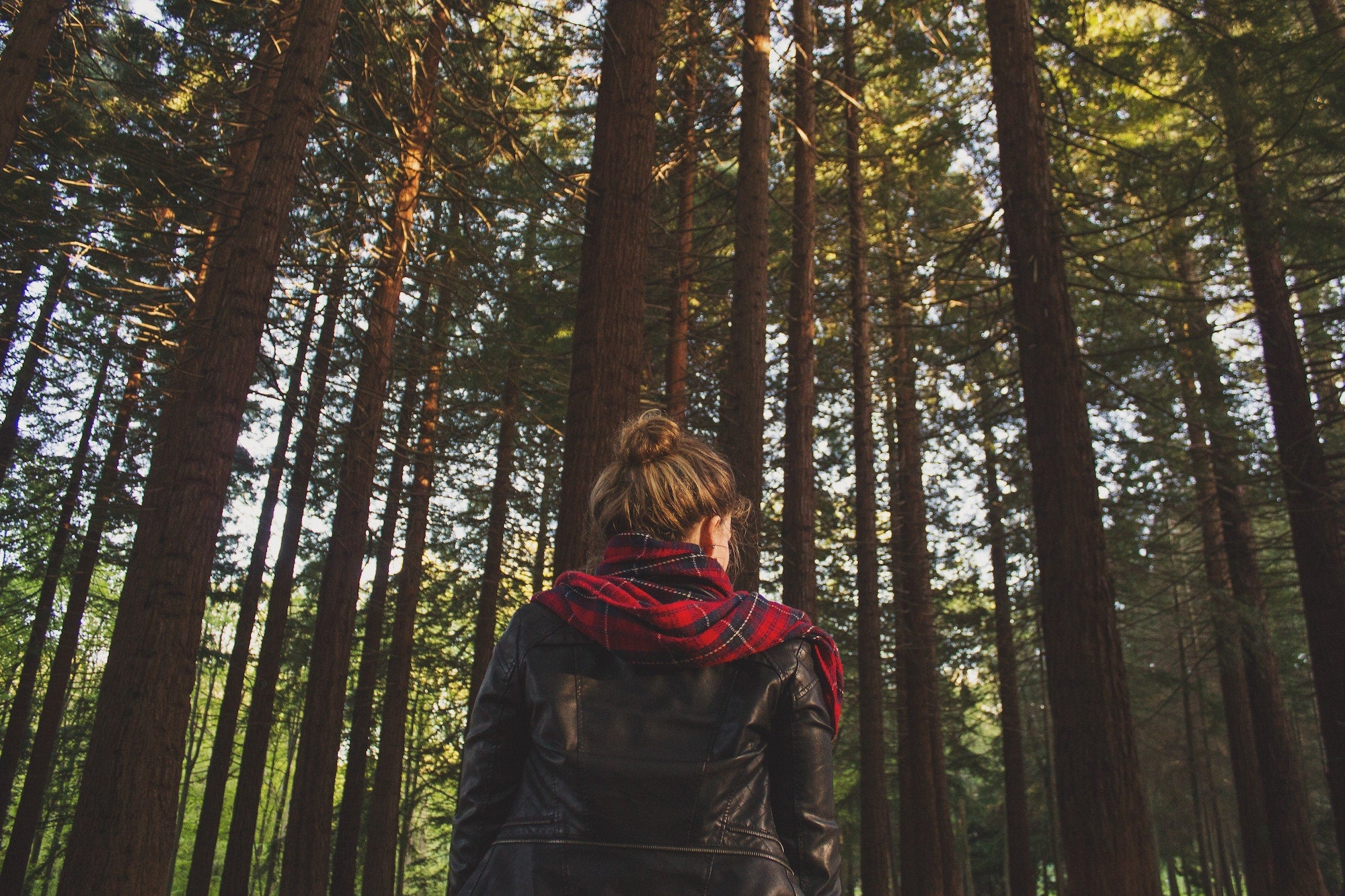 Hygge Lifestyle: girl with a red scarf spends time on a green forest | Talsam