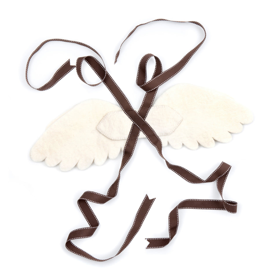 Fairy Dressing up Wings