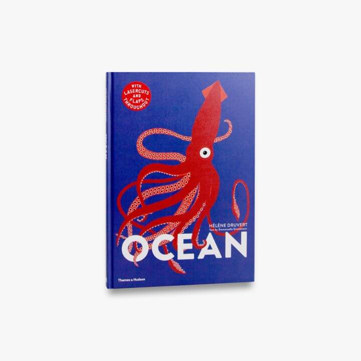Ocean, Lift the Flap Book