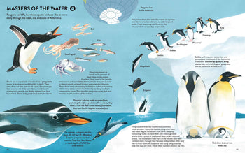 Penguins and Polar Bears Book