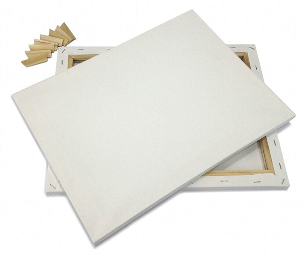 "Set of 2 ARTIST CANVAS 10x20"" Framed Pre-Stretched BLANK Cotton Double Gesso"