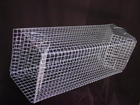 EDMBG Double Door Collapsible FISH TRAP - Fish live well NEW!
