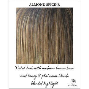Almond Spice-R-Rooted dark with medium brown base and honey & platinum blonde blended highlight
