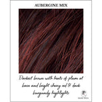 Load image into Gallery viewer, Aubergine Mix-Darkest brown with hints of plum at base and bright cherry red & dark burgundy highlights