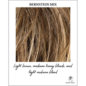 Bernstein Mix-Light brown base with subtle light honey blonde and light butterscotch blonde highlights