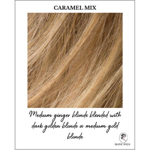 Caramel Mix-Medium ginger blonde blended with dark golden blonde a medium gold blonde