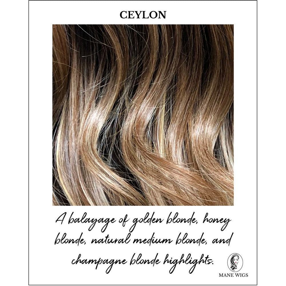Ceylon-A balayage of golden blonde, honey blonde, natural medium blonde, and champagne blonde highlights.