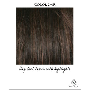 2/4R-Very dark brown with highlights
