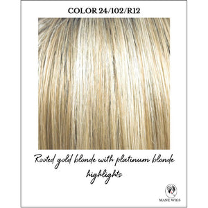 24/102/R12-Rooted gold blonde with platinum blonde highlights