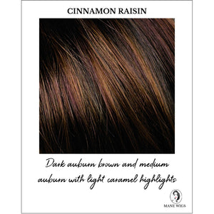 Cinnamon Raisin Highlighted - Dark brown and medium auburn with light caramel highlights