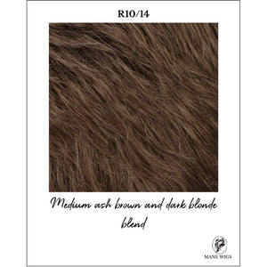 R10/14-Medium ash brown and dark blonde blend