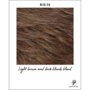 R12/14-Light brown and dark blonde blend