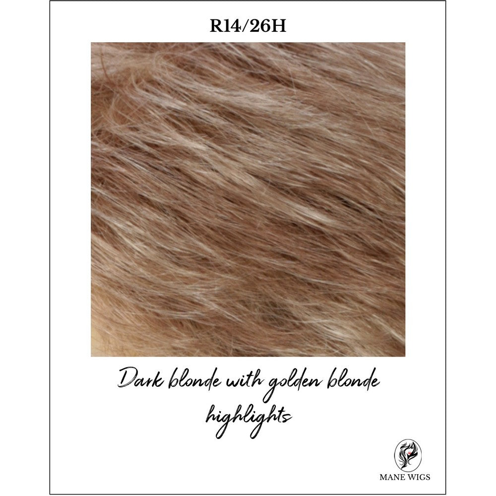 R14/26H-Dark blonde with golden blonde highlights