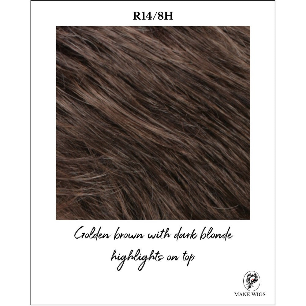 R14/8H-Golden brown with dark blonde highlights on top