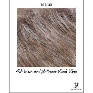 R17/101-Ash brown and platinum blonde blend
