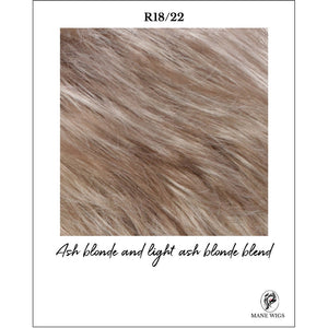 R18/22-Ash blonde and light ash blonde blend