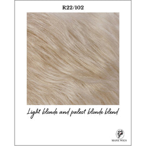 R22/102-Light blonde and palest blonde blend