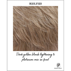 R25LF123-Dark golden blonde lightening to platinum mix in front