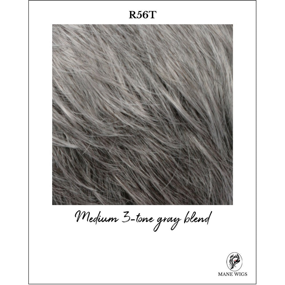 R56T-Medium 3-tone gray blend