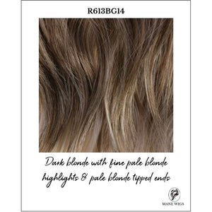 R613BG14-Dark blonde with fine pale blonde highlights & pale blonde tipped ends