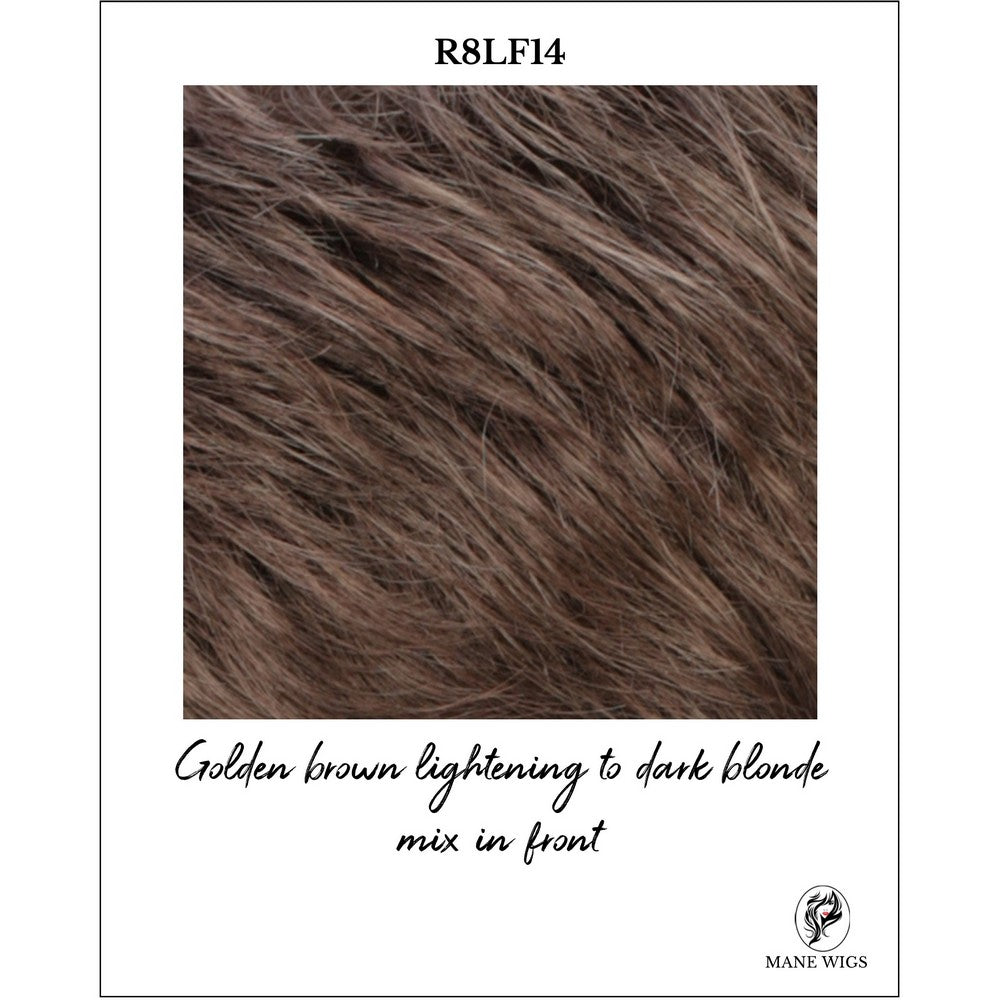 R8LF14-Golden brown lightening to dark blonde mix in front