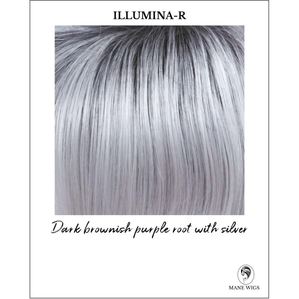 Illumina-R-Dark brownish purple root with silver