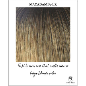 Macadamia-LR - Soft brown root that melts into a beige blonde color