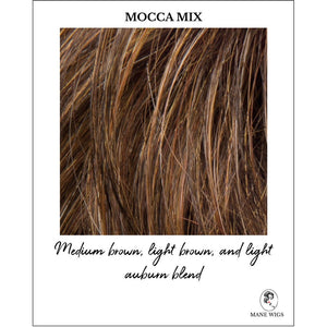 Mocca Mix-Medium brown, light brown, and light auburn blend